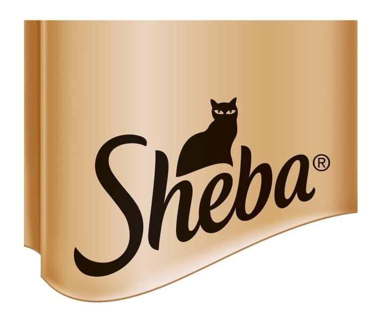 sheba.pl